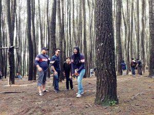 wisata jogja hutan pinus